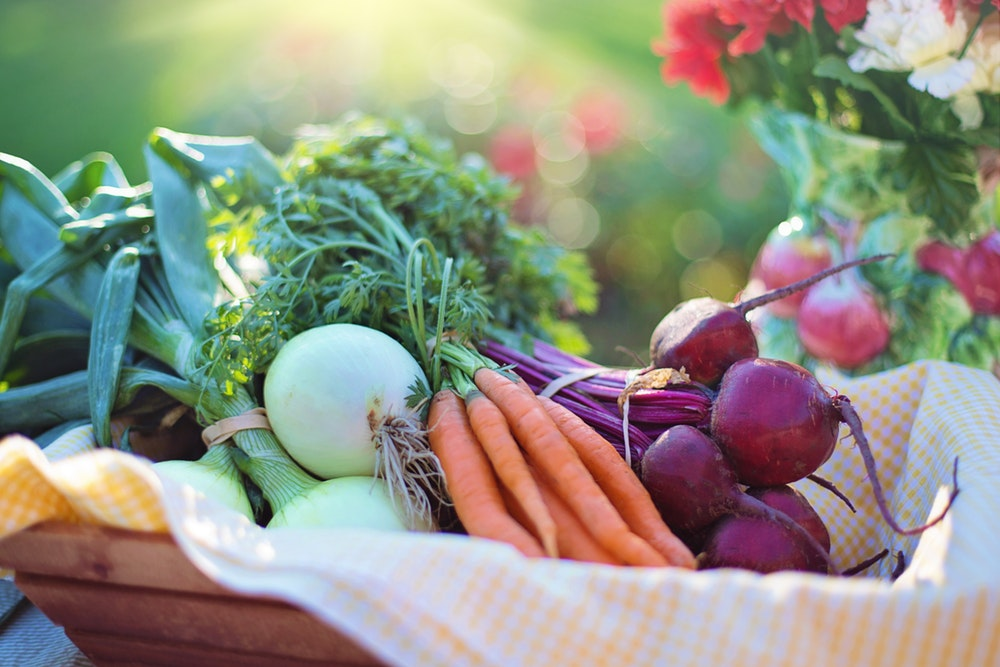 In-season fruits and veggies are a key part of senior nutrition.